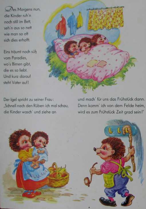 Der Wettlauf Zwischen Hase Und Igel Bilderbuch 50er Www